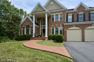 5436 Chandley Farm Circle, Centreville, VA 20120 (#FX9880938) :: Pearson Smith Realty