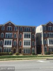 4579 Whittemore Place #1242, Fairfax, VA 22030 (#FX9885406) :: LoCoMusings