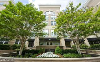 12000 Market Street #339, Reston, VA 20190 (#FX9903294) :: Pearson Smith Realty