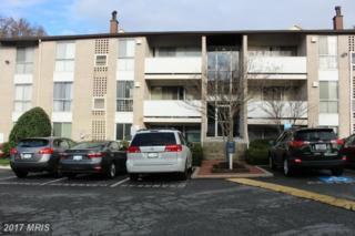 5608 Bismach Drive #101, Alexandria, VA 22312 (#FX9903457) :: Pearson Smith Realty