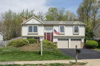 14122 Wood Rock Way, Centreville, VA 20121 (#FX9904668) :: Pearson Smith Realty