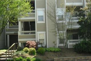 14309 Climbing Rose Way #301, Centreville, VA 20121 (#FX9907375) :: Pearson Smith Realty