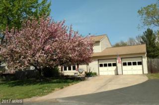 5454 Braddock Ridge Drive, Centreville, VA 20120 (#FX9908657) :: Pearson Smith Realty