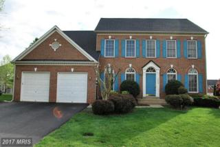 14036 Rose Lodge Place, Chantilly, VA 20151 (#FX9921578) :: Pearson Smith Realty