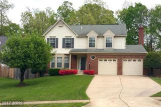 14718 Top Sergeant Lane, Centreville, VA 20121 (#FX9925632) :: Pearson Smith Realty