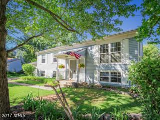1226 Summerfield Drive, Herndon, VA 20170 (#FX9930102) :: Pearson Smith Realty