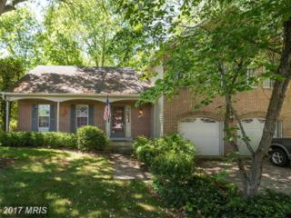 15213 Snellings Court, Centreville, VA 20120 (#FX9933112) :: Pearson Smith Realty