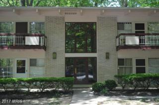 7722 Donnybrook Court #206, Annandale, VA 22003 (#FX9933474) :: Pearson Smith Realty