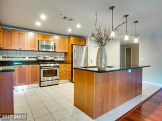 2451 Midtown Avenue #219, Alexandria, VA 22303 (#FX9936365) :: Pearson Smith Realty
