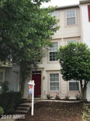 14004 Gunners Place, Centreville, VA 20121 (#FX9937948) :: Pearson Smith Realty