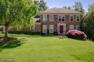 6634 Rockland Drive, Clifton, VA 20124 (#FX9940334) :: Pearson Smith Realty
