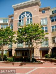 12001 Market Street #178, Reston, VA 20190 (#FX9948414) :: Pearson Smith Realty