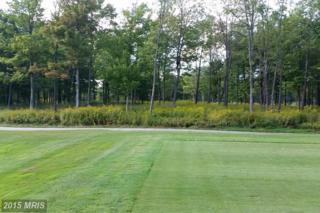 Lot 17A Green Brier Drive, McHenry, MD 21541 (#GA8752708) :: Pearson Smith Realty