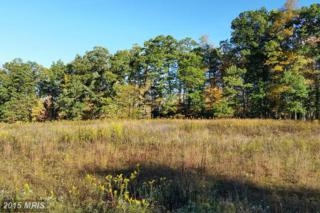 LOT 3 Fantasy Lane, McHenry, MD 21541 (#GA8766071) :: Pearson Smith Realty