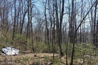 Lot 8 Fox Tail Road, Oakland, MD 21550 (#GA9627260) :: Pearson Smith Realty