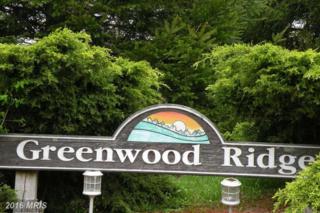3 Greenwood Ridge, Accident, MD 21520 (#GA9630864) :: Pearson Smith Realty
