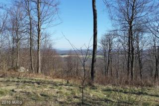 Lot 93 Lower Camp Road, McHenry, MD 21541 (#GA9631037) :: Pearson Smith Realty