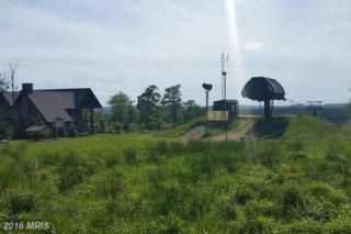 LOT 60 Camp Circle, McHenry, MD 21541 (#GA9685991) :: Pearson Smith Realty