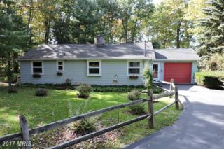 215 Hillcrest Drive, Deer Park, MD 21550 (#GA9940480) :: Pearson Smith Realty