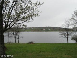 Lake Ridge Heights, Mount Storm, WV 26739 (#GT9652792) :: Pearson Smith Realty
