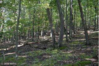 Woodpecker Lane, Maysville, WV 26833 (#GT9758826) :: Pearson Smith Realty