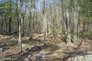 3 Lost River Glen, Wardensville, WV 26851 (#HD8710572) :: Pearson Smith Realty