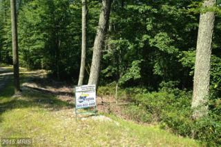 High Knob Rd, Old Fields, WV 26845 (#HD8729470) :: Pearson Smith Realty