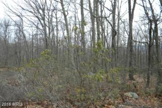 LOT 10 Lost River Ridge Circle, Wardensville, WV 26851 (#HD9577802) :: Pearson Smith Realty
