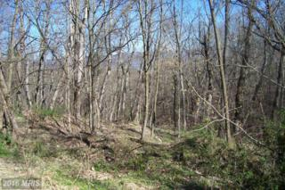 Lot 36 Sec.Ii Orchard Lane, Moorefield, WV 26836 (#HD9618061) :: Pearson Smith Realty
