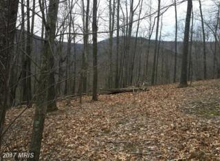 Wilson Run Trail, Milam, WV 26838 (#HD9677571) :: LoCoMusings
