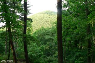 LOT 61 Pinewood Trail, Milam, WV 26838 (#HD9679212) :: LoCoMusings