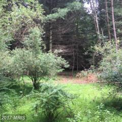 707 Wildlife Drive, Lost River, WV 26810 (#HD9718900) :: Pearson Smith Realty