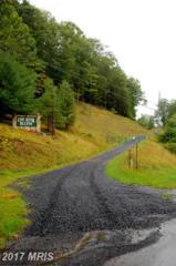 14 Boulder Drive, Mathias, WV 26812 (#HD9831923) :: Pearson Smith Realty