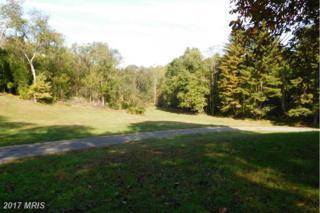 2812 Rocks Road, Jarrettsville, MD 21084 (#HR9818084) :: LoCoMusings