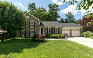1202 Hidden Stream Court, Abingdon, MD 21009 (#HR9842604) :: Pearson Smith Realty