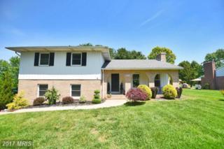 107 Rhineforte Drive, Churchville, MD 21028 (#HR9872584) :: Pearson Smith Realty