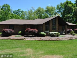 2011 Twin Lakes Drive, Jarrettsville, MD 21084 (#HR9944050) :: Pearson Smith Realty