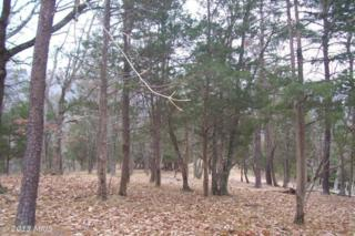 Hidden Hollow Road, Romney, WV 26757 (#HS7198159) :: Pearson Smith Realty