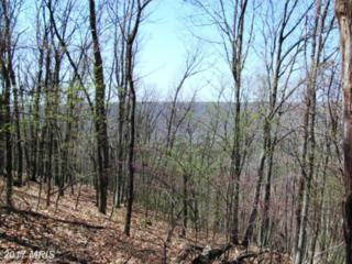 6 Cardinal Ridge Estate, Romney, WV 26757 (#HS8729239) :: Pearson Smith Realty