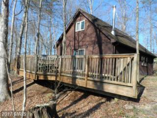 80 Creekside, Capon Bridge, WV 26711 (#HS9625630) :: LoCoMusings