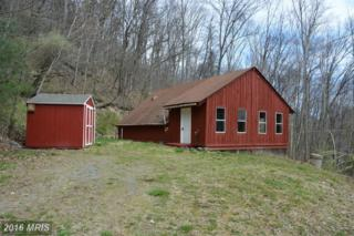 2307 Old Mill Road, Capon Bridge, WV 26711 (#HS9644530) :: Pearson Smith Realty