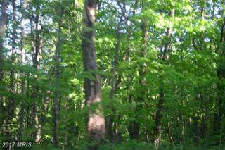 Cardinal View Road, Bloomery, WV 26817 (#HS9658466) :: LoCoMusings