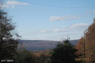 Janes Way, High View, WV 26808 (#HS9658619) :: Pearson Smith Realty