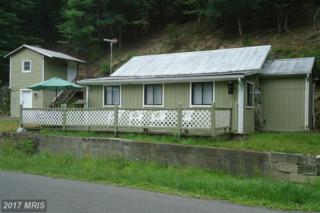 3197 Capon Springs Road-Rt #16, High View, WV 26808 (#HS9710915) :: LoCoMusings