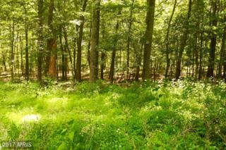 LOT 16 Falcon View Drive, Capon Bridge, WV 26711 (#HS9723655) :: Pearson Smith Realty