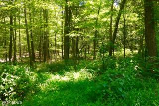 LOT 17 Falcon View Drive, Capon Bridge, WV 26711 (#HS9723667) :: Pearson Smith Realty