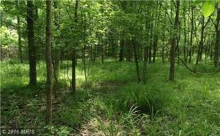 Mountain River Way, Levels, WV 25431 (#HS9730529) :: Pearson Smith Realty