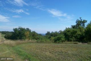 Nathaniel Drive, Romney, WV 26757 (#HS9751727) :: Pearson Smith Realty