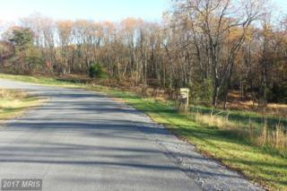 Harvest Drive, Romney, WV 26757 (#HS9787843) :: Pearson Smith Realty