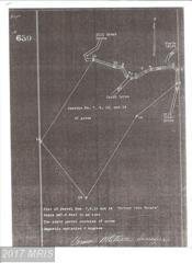 Off Dillions Estates Road, Capon Bridge, WV 26711 (#HS9794715) :: LoCoMusings
